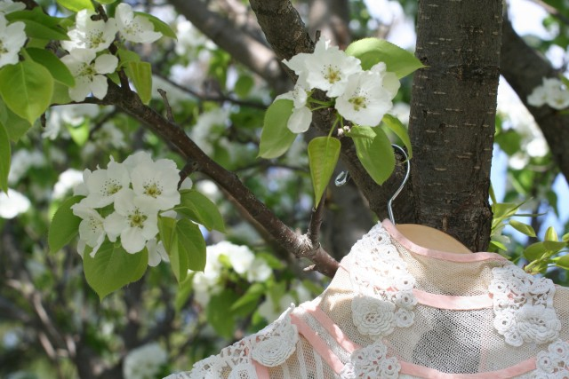 Dress with Apple Blossoms