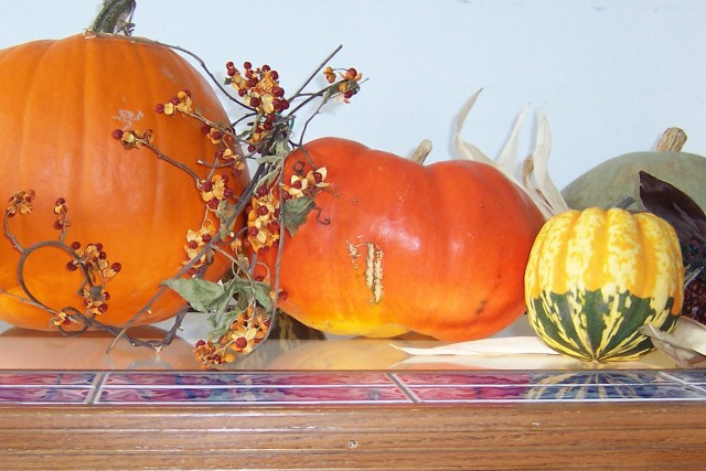 Harvest Table 2003