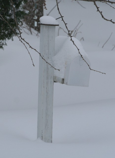 Winter Mailbox Trim