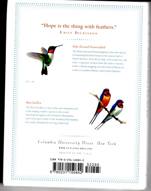 Allure of Birds Bright Wings Back Cover Copy