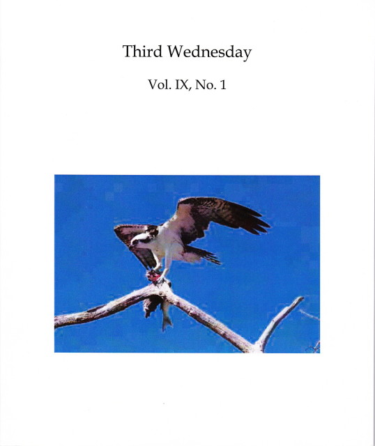 Third Wednesday Cover