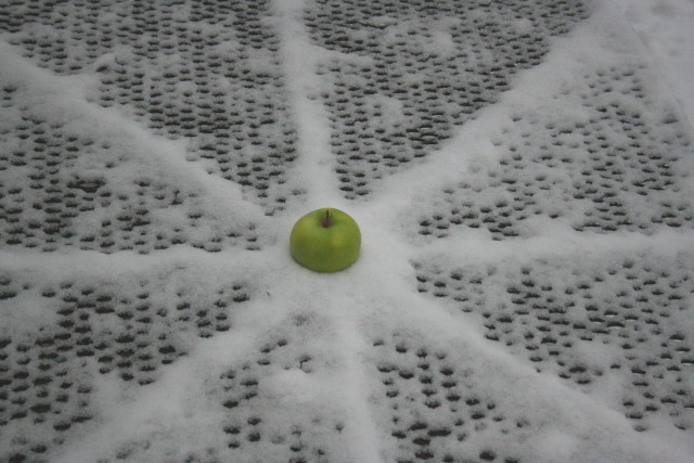winter-apple-star