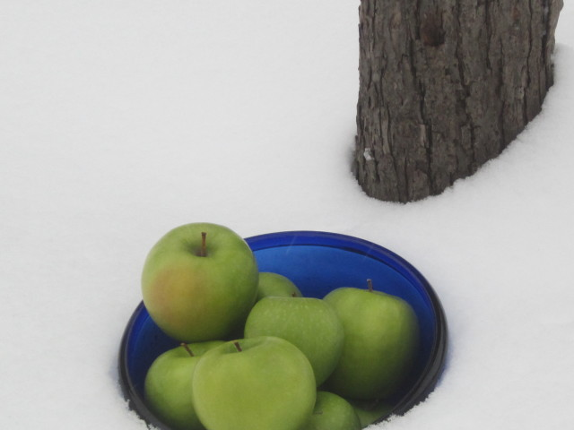 winter-green-apples